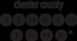 CCST_Logo.webp