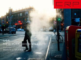 NEW YORK 2015 WINTER CITY