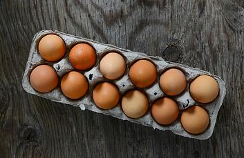 Eggs_Shopify_b93b9c5b-ca40-4887-8aae-35b