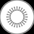 xl_Virus_Icon_GREY.png