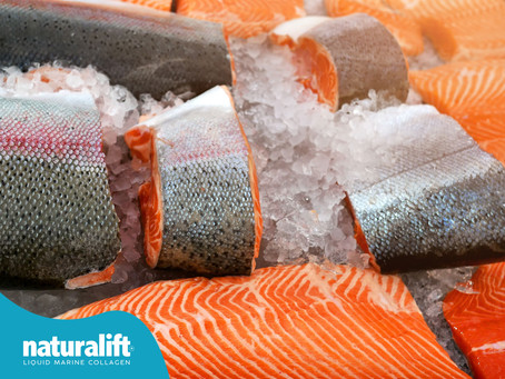 Balık Kolajeni Hangi Balıklardan Üretilir?