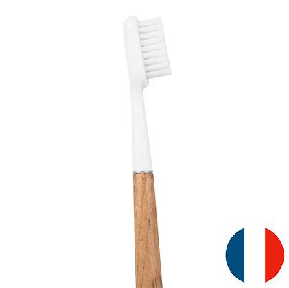 Brosse à dents en chêne - Caliquo