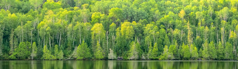 Bearskin Lake