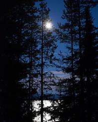 Moon Silouette