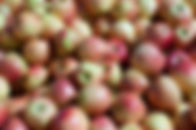 Apples crop insurance, 2014 farm bill, georgia