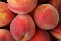 peach crop insurance, 2014 farm bill, georgia