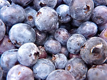 Blueberries crop insurance, 2014 farm bill, georgia