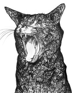 STRAY / CATS