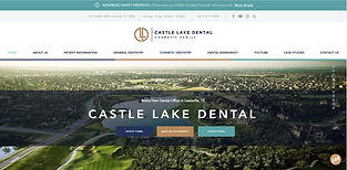 Castle Lake Dental_Website Design by GMe
