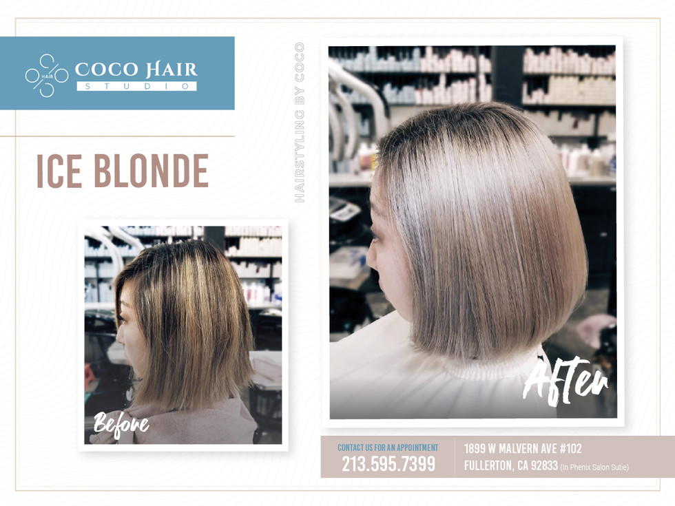 Before & After | Ice Blonde 1