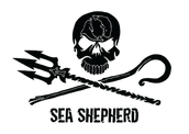 d46e1-ss_jr_logo_black.png