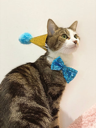 Pawty Hat & Bow