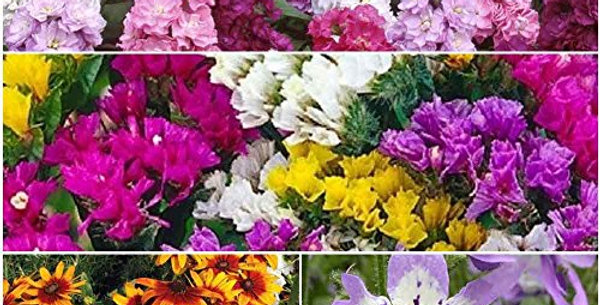 Exotic Winter Flowers Kit-4 Packets