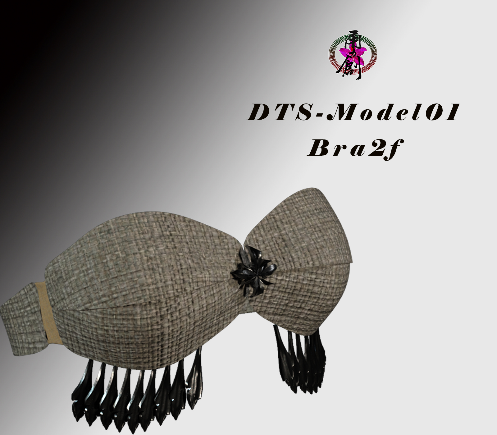 DTS-Model01-Bra2F