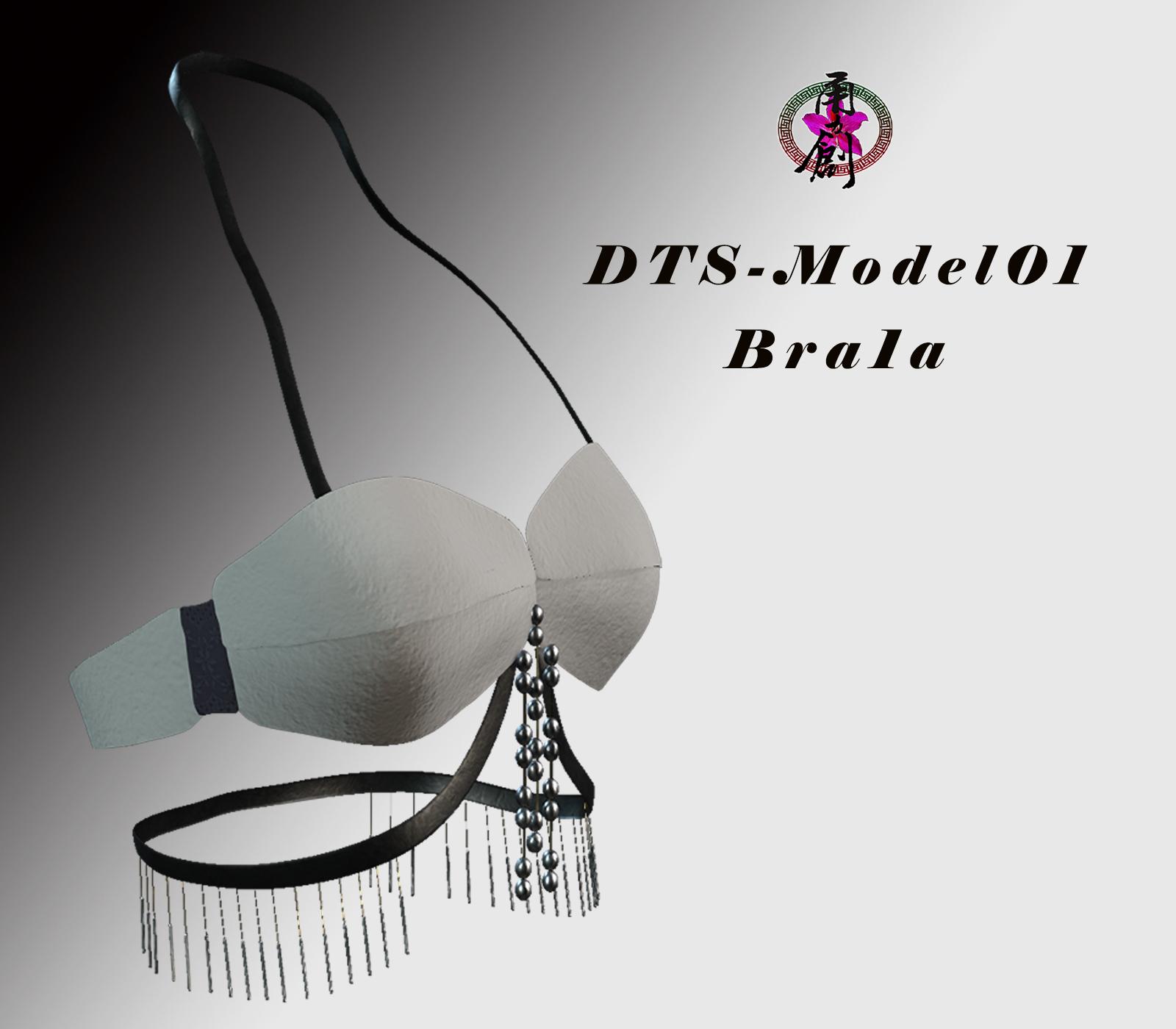 DTS-Model01-Bra1A