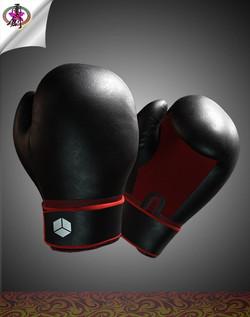 Boxing Glove-1