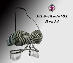 DTS-Model01-Bra1D