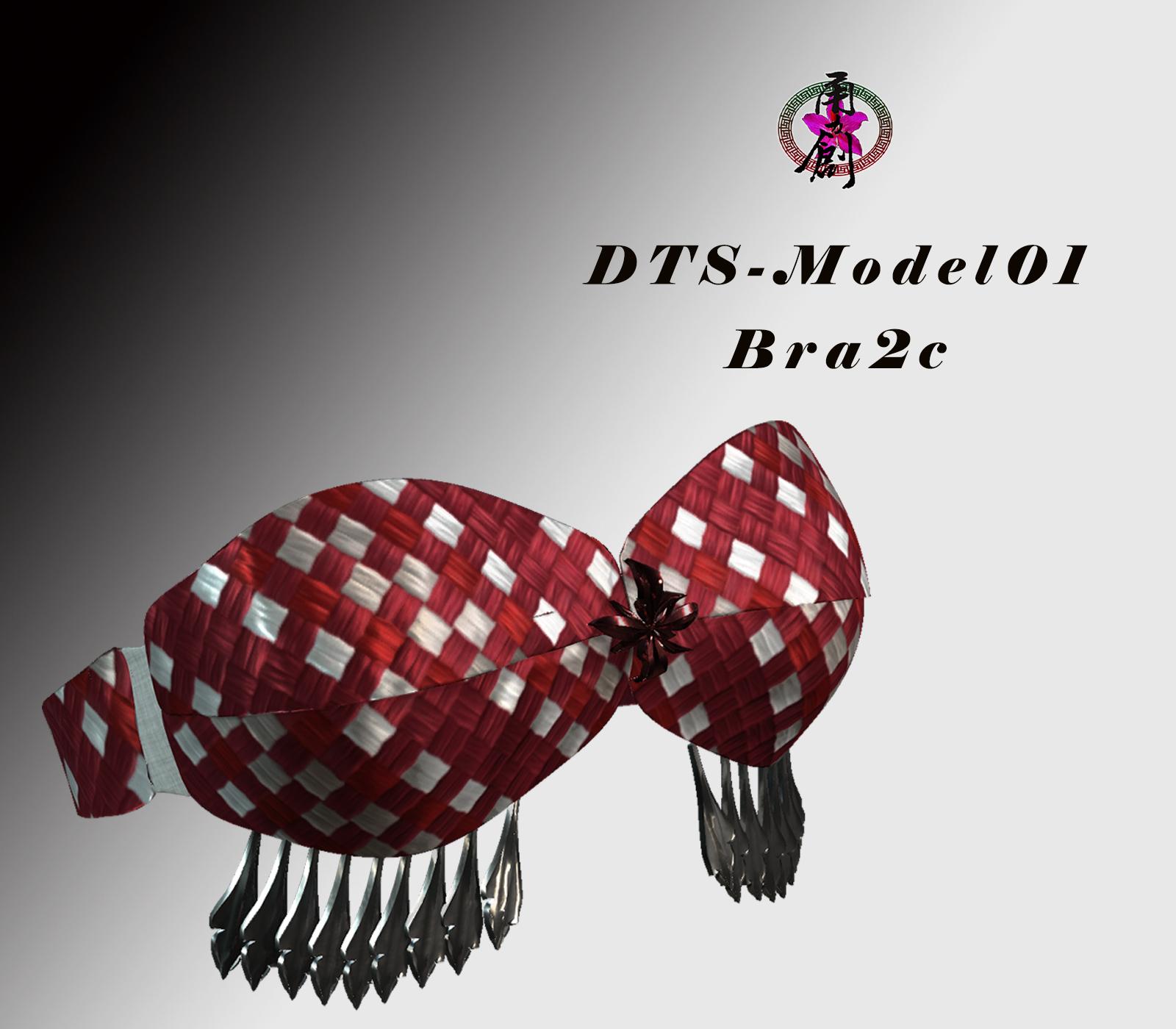 DTS-Model01-Bra2C