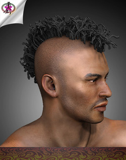yc-visualrock2-hair02