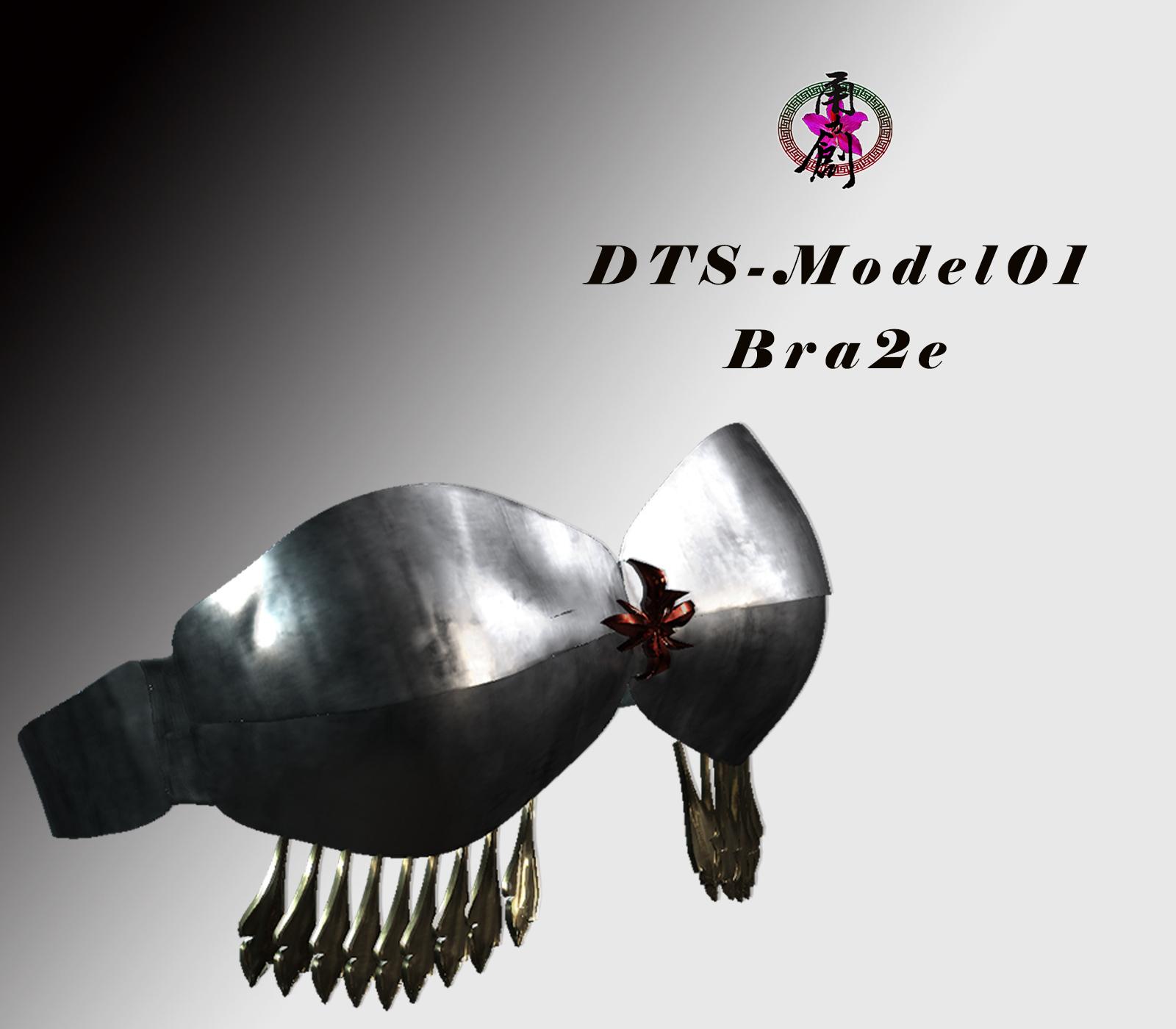 DTS-Model01-Bra2E