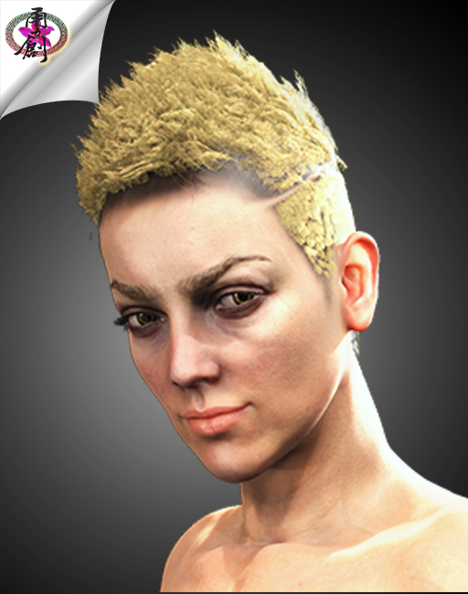 Visual Rock 5 - Hair1