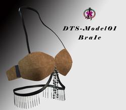 DTS-Model01-Bra1E