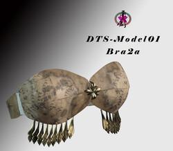 DTS-Model01-Bra2A