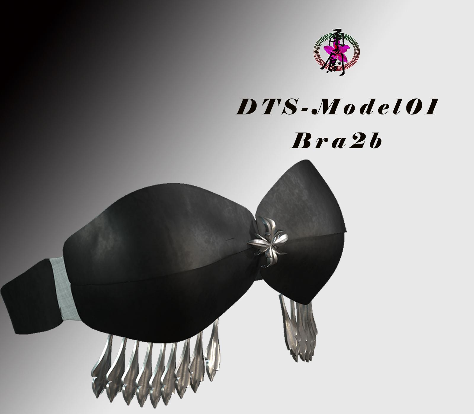 DTS-Model01-BrA2b