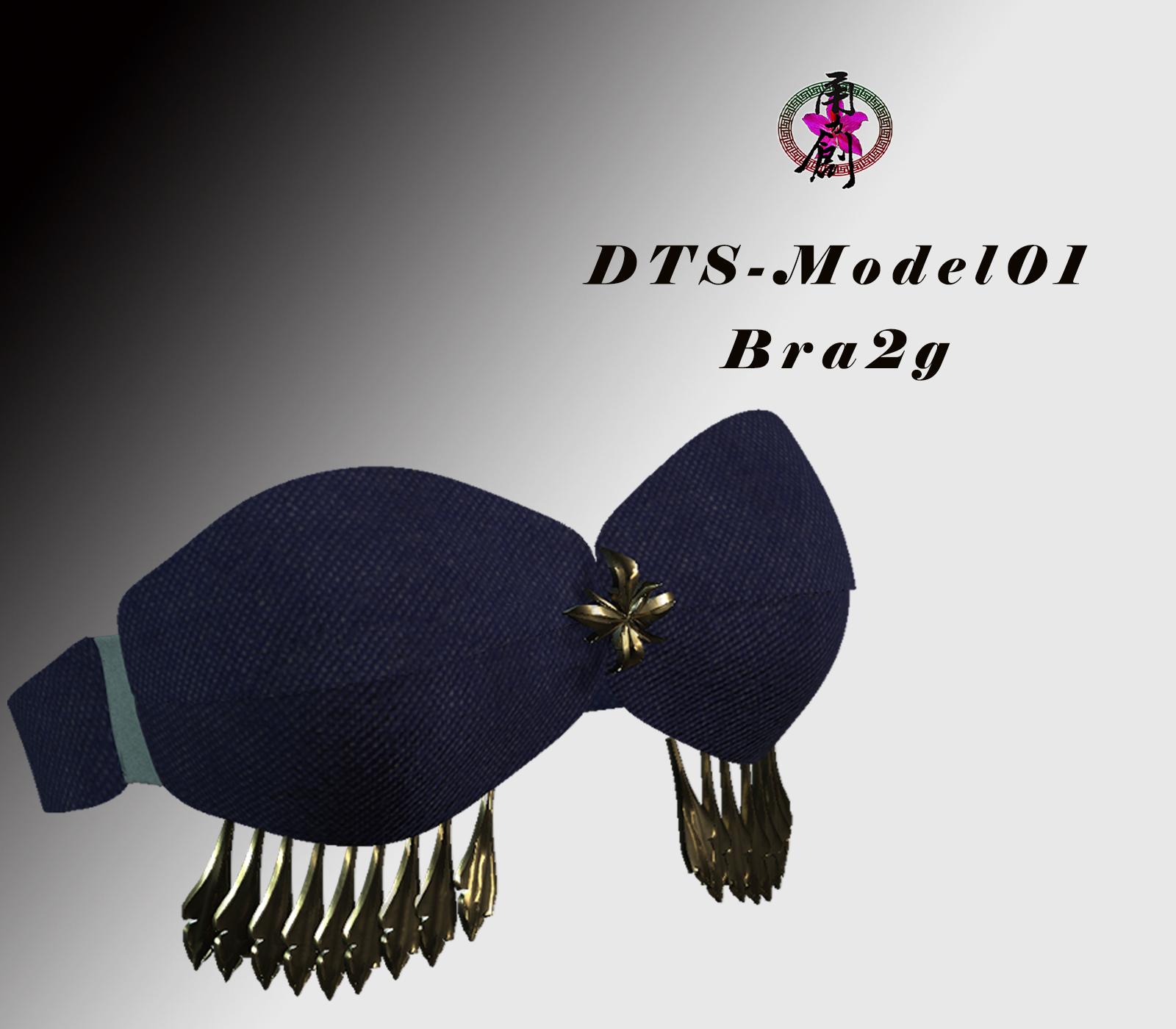 FBX-DTS-Model01-Bra2G