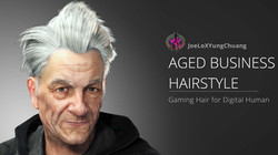Aged Business Hairstyle -Poster01