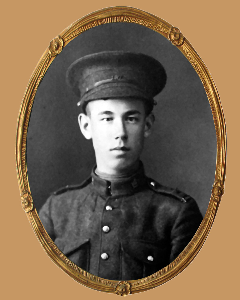 Private James Langley of Coldwater was killed in action 100 years ago in France.