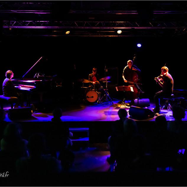 Openland Quartet