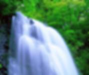 滝.png