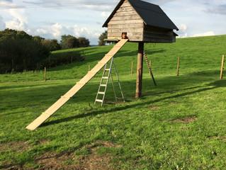 Braving the 'Hugh Fearnley-Whittingstall' inspired high-rise hut.