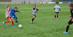 VfB_CampBrouch2020-1_DSC_0461_site.jpg