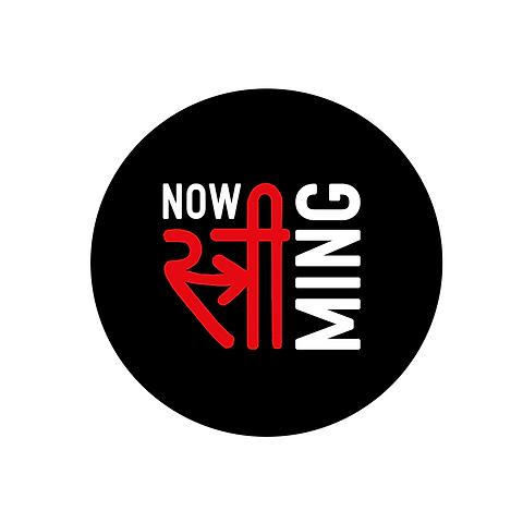 Logo Netflix colours copy 2.png