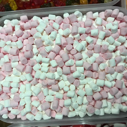 Hot Chocolate Marshmeloes  - Sweets and Treats - www.bigbouncybriers.co
