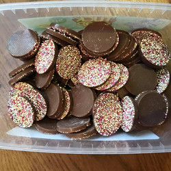 Chocolate Discs  - Sweets and Treats - www.bigbouncybriers.co