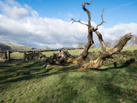 The Derwent Valley