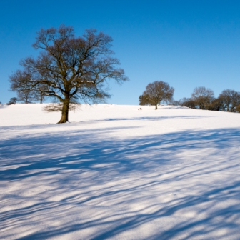 Snowy fields near Birchover