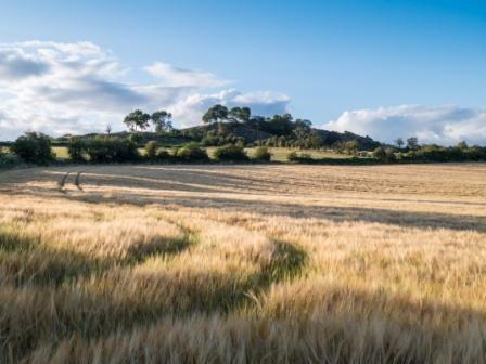 Shropshire crops