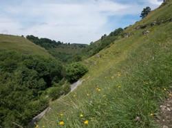 Derbyshire dales