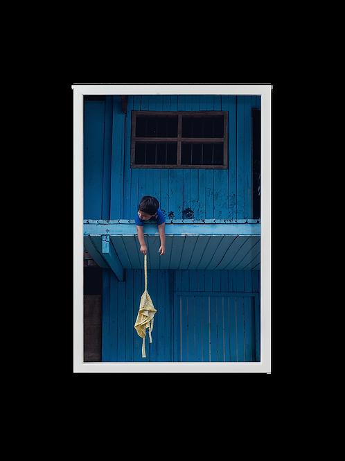 Azul Selva
