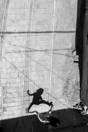 Saltamonte 2.jpg
