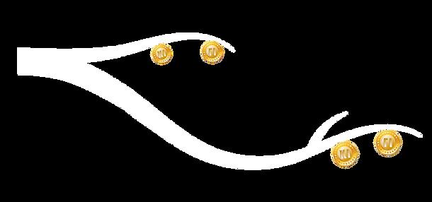 Kids Finance coin