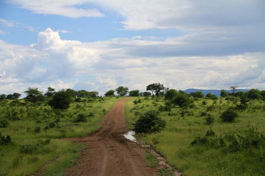 Roadpicture