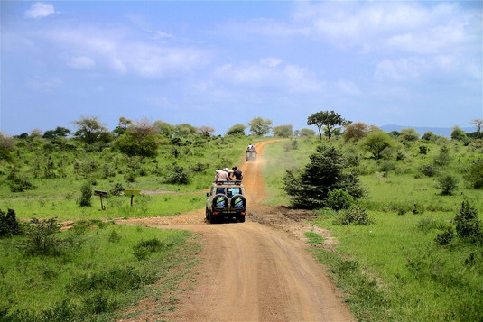 Selous on the road