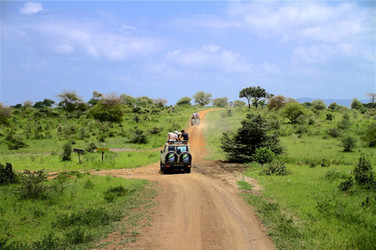 On the road in Selous