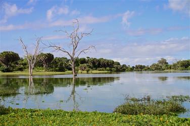 Selous Lake