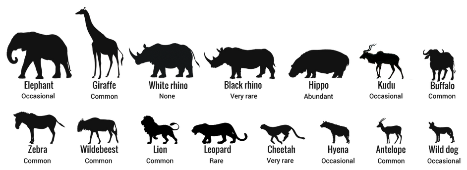 animals-selous.png